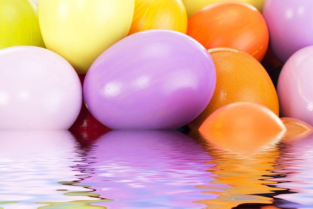 Underwater Egg Hunt | Events | YMCA of Greater Cincinnati
