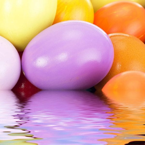 Underwater Egg Hunt | Events | YMCA of Greater Cincinnati